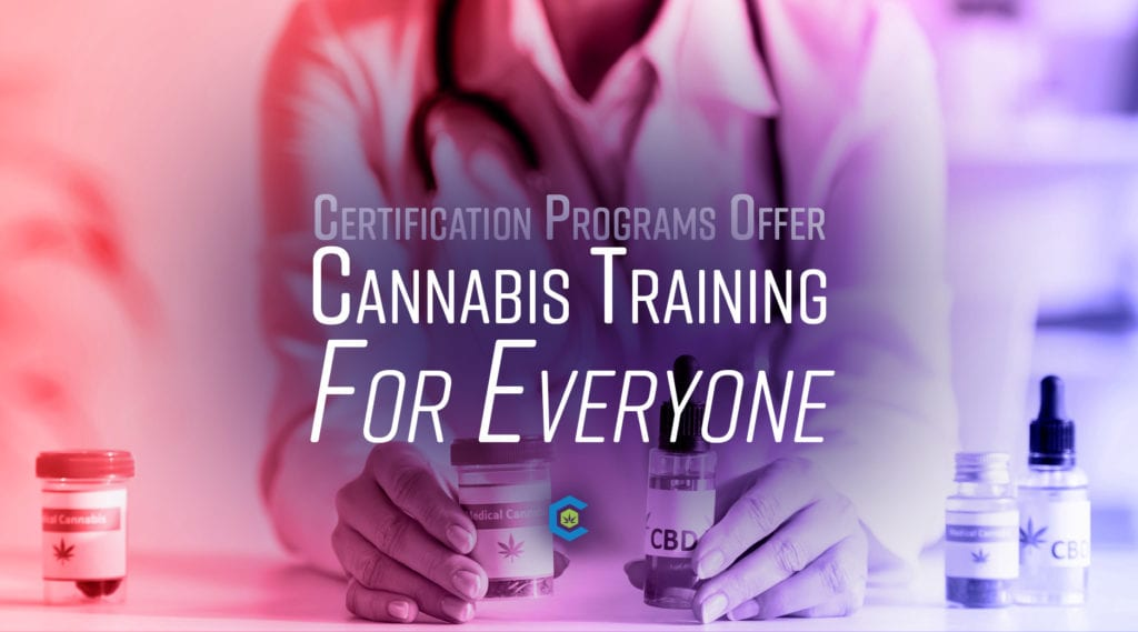 BlogHeader Cannabis Training for Everyone