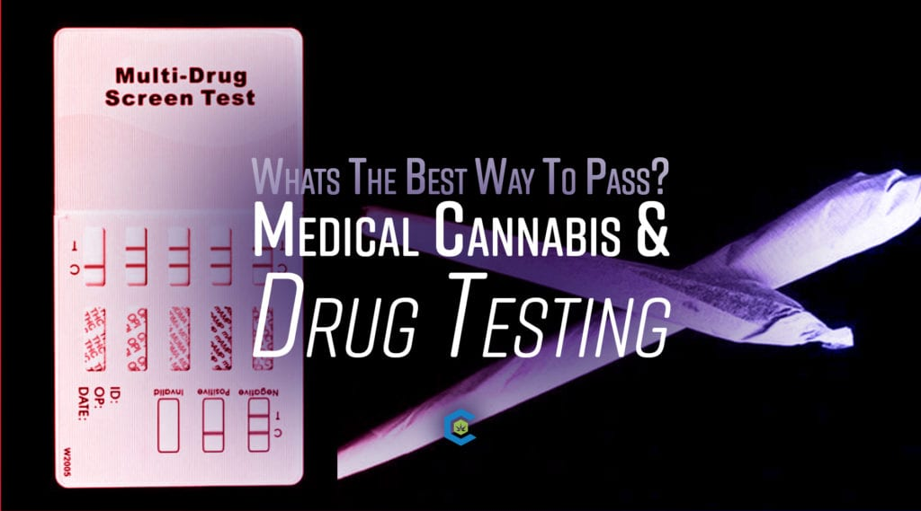 BlogHeader Employment Drug Tests and how to pass